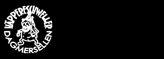 Die Guuggenmusik aus Dagmersellen
